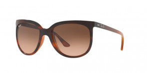Ray-Banu00ae RB 4126 820/A5