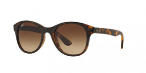 Ray-Banu00ae RB 4203 710/13